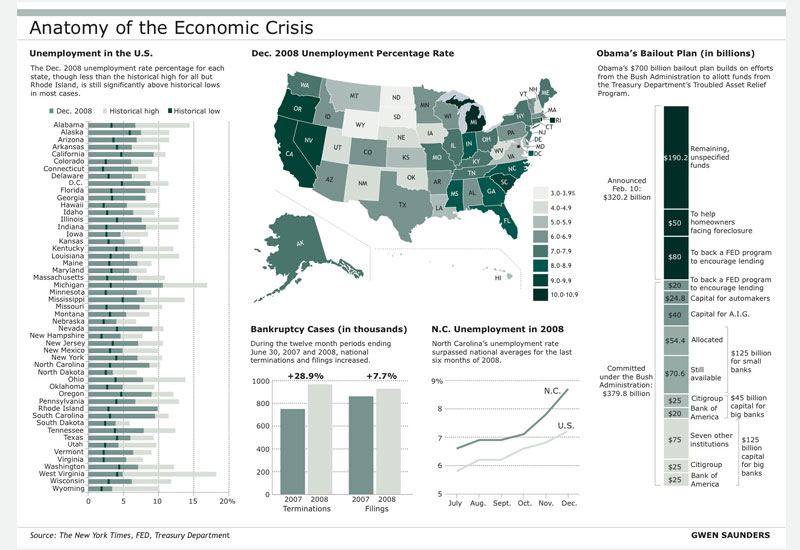 Anatomy of the economic crisis infographic